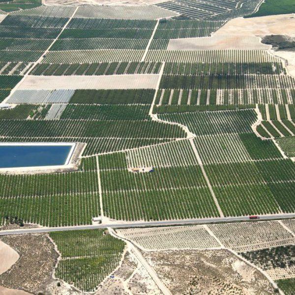 campos-producción